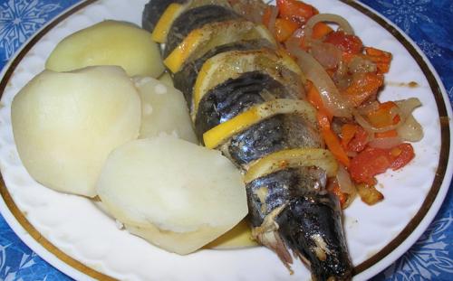 riba _smak