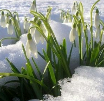 Весенние_праздники_в_марте